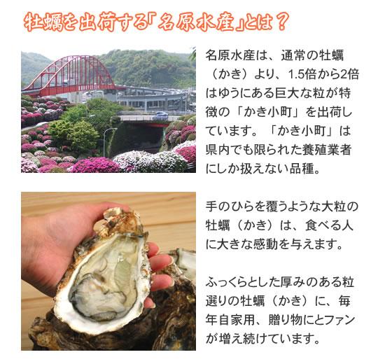 牡蠣を出荷する「名原水産」とは?